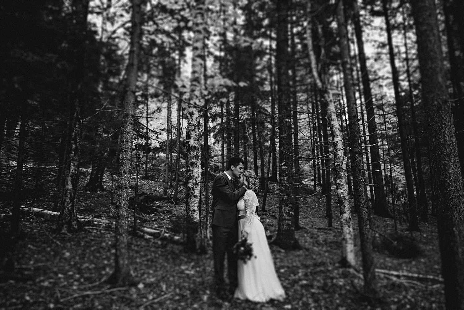 groom kissing bride in the forest