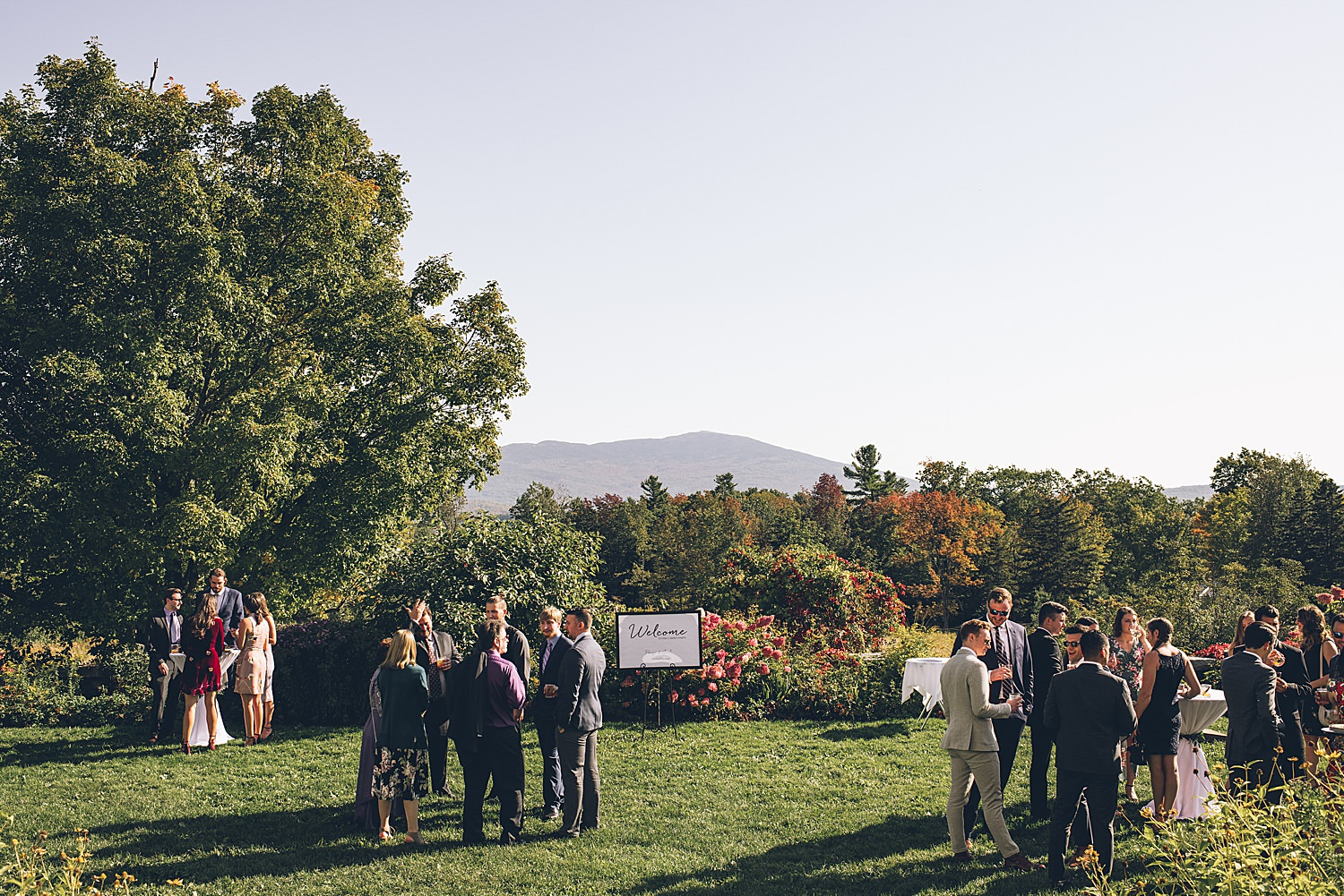 wedding guests mingling on the lawn