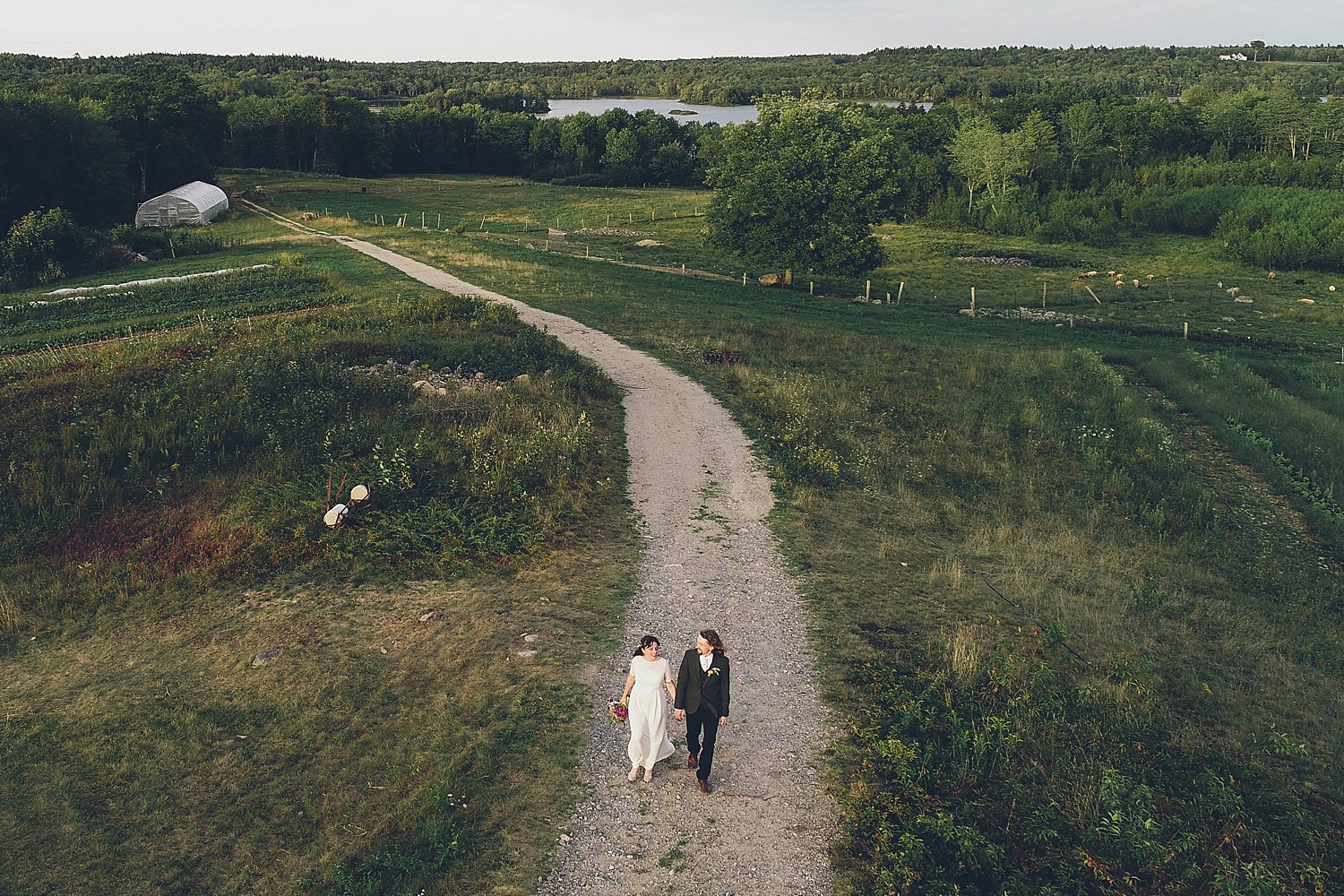 Ariel view of bride and groom walking through the farm